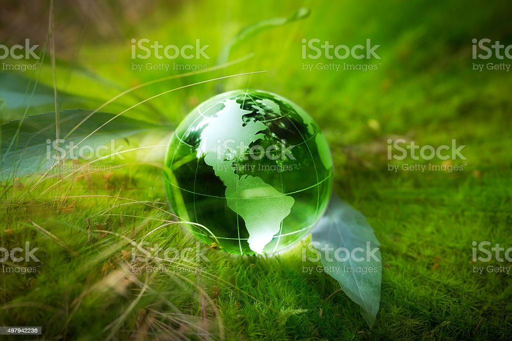 Globe resting on moss in a forest. stock photo