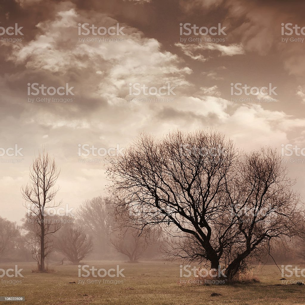gloomy afternoon royalty-free stock photo