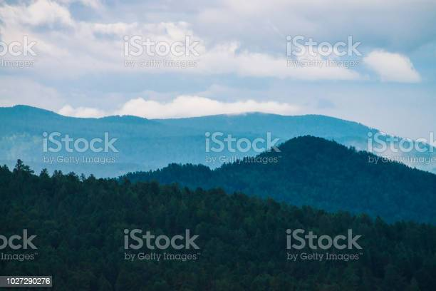 Photo of Gloomy green forest under blue mountains in fog on horizon in dusk. Atmospheric mystic evening mountain landscape of majestic nature.