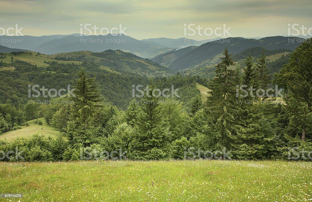 gloomy landscape royalty-free stock photo