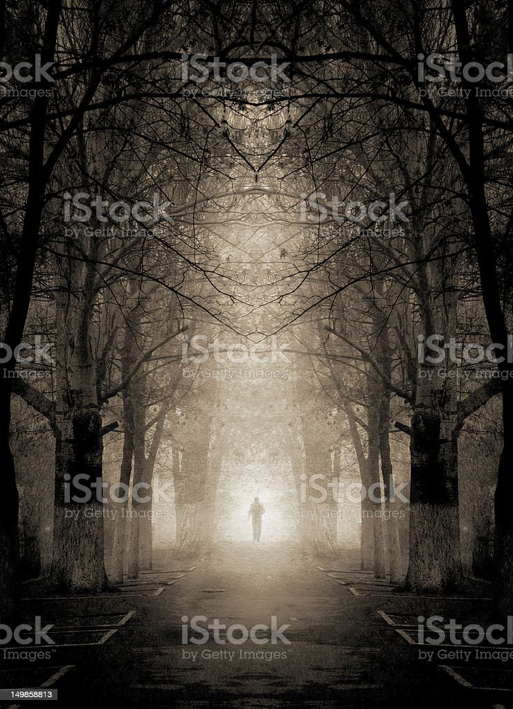 Gloomy night landscape in the woods with a distant figure stock photo