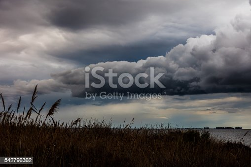 istock Gloomy sky over field 542796362