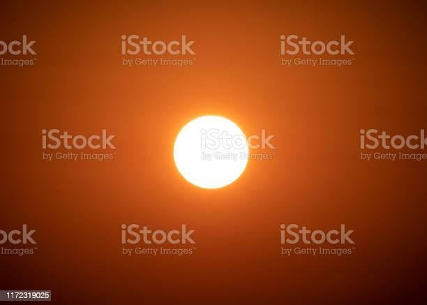 Photo of A Glorious Bronze Isolated Sunrise