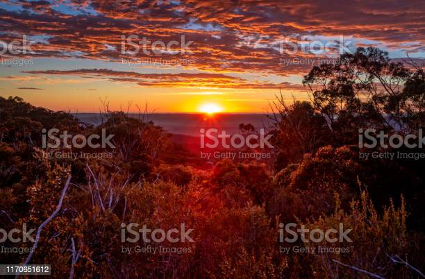 Photo of Glorious sunrise with views across wilderness mountain bushland