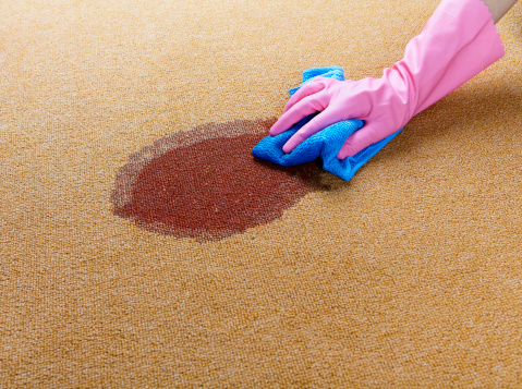 istock Gloved hand cleaning a wet spot on floor 175426163