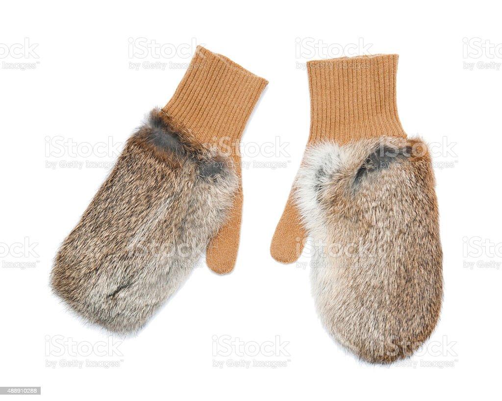 Gloves stock photo
