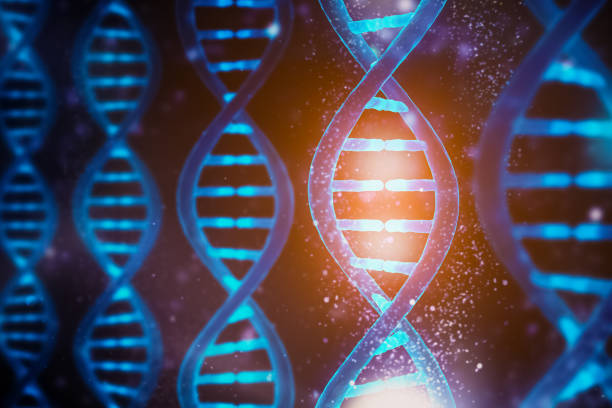 Glowing and shining DNA strands double helix close-up. Medical, biology, microbiology, genetics 3D rendering illustration concept. Artist vision. stock photo