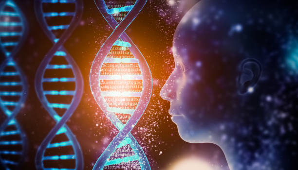 Glowing and shining DNA strands double helix close-up with genome code and human head profile Medical, biology, microbiology, genetics 3D rendering illustration concept. Artist vision. stock photo