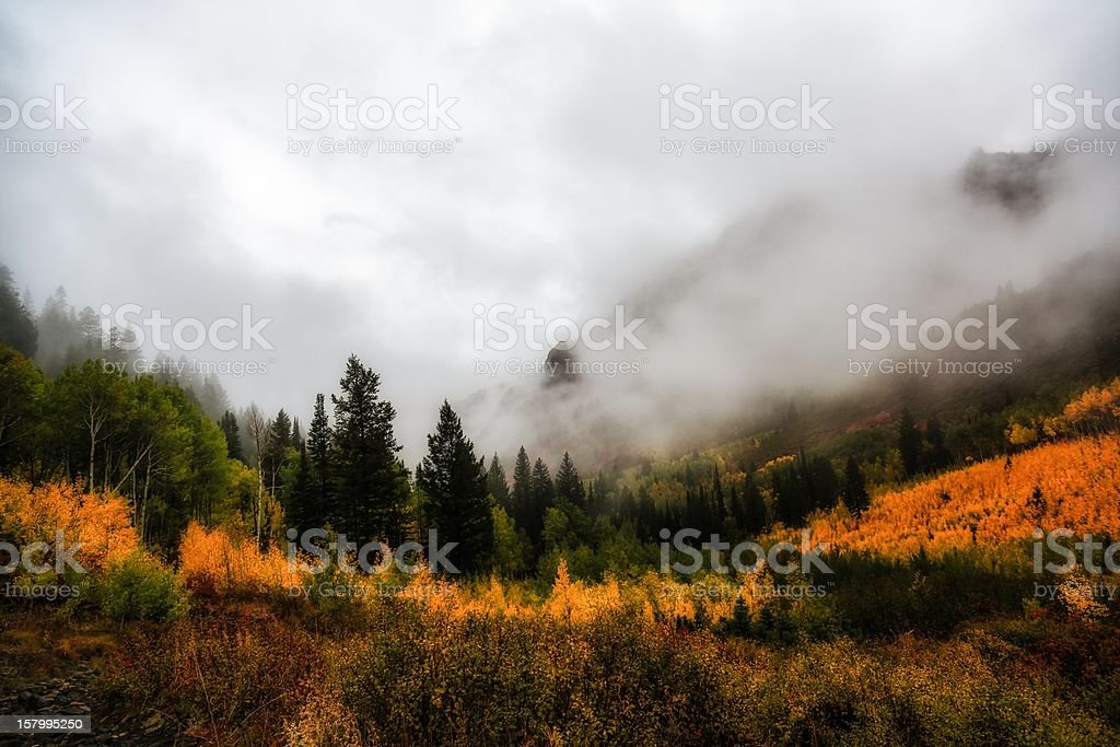 Glowing Autumn Colors stock photo