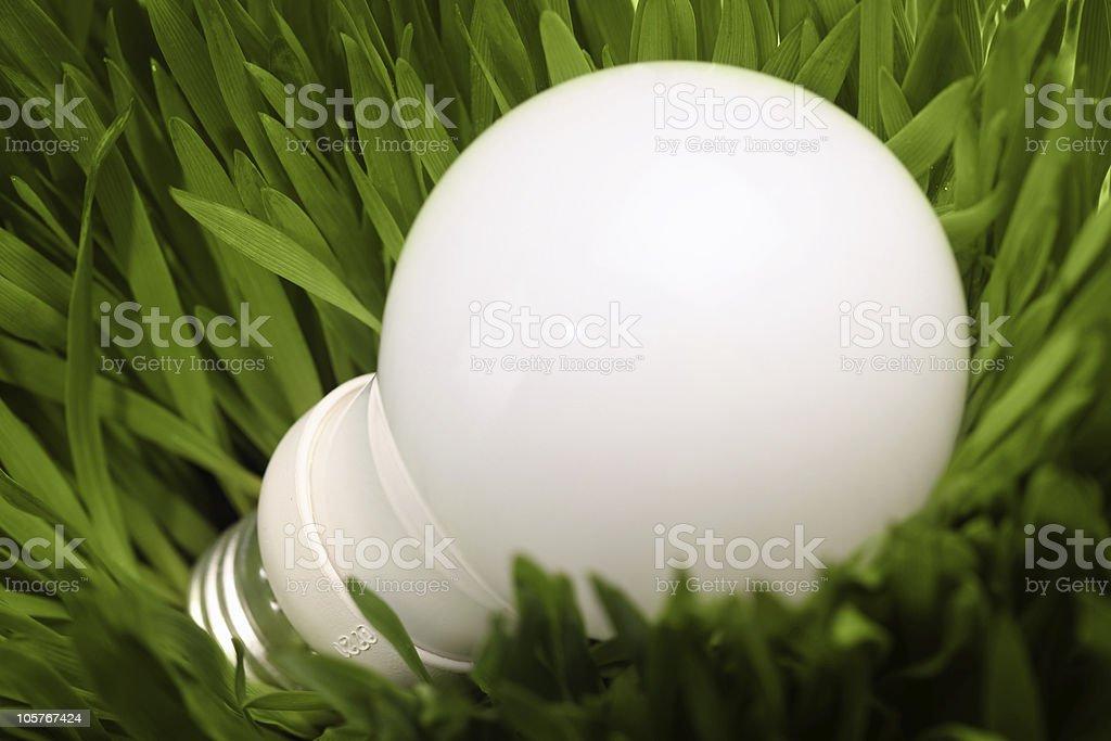 Glowing energy saving lightbulb on green grass stock photo