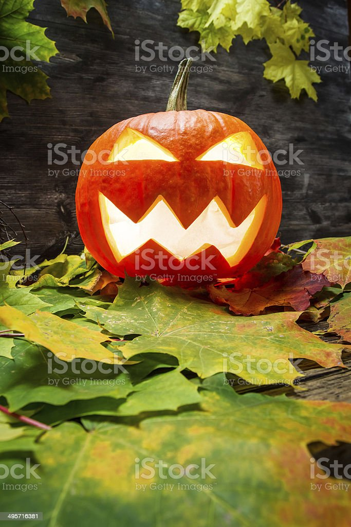 Glowing halloween pumpkin on autumn leaves royalty-free stock photo
