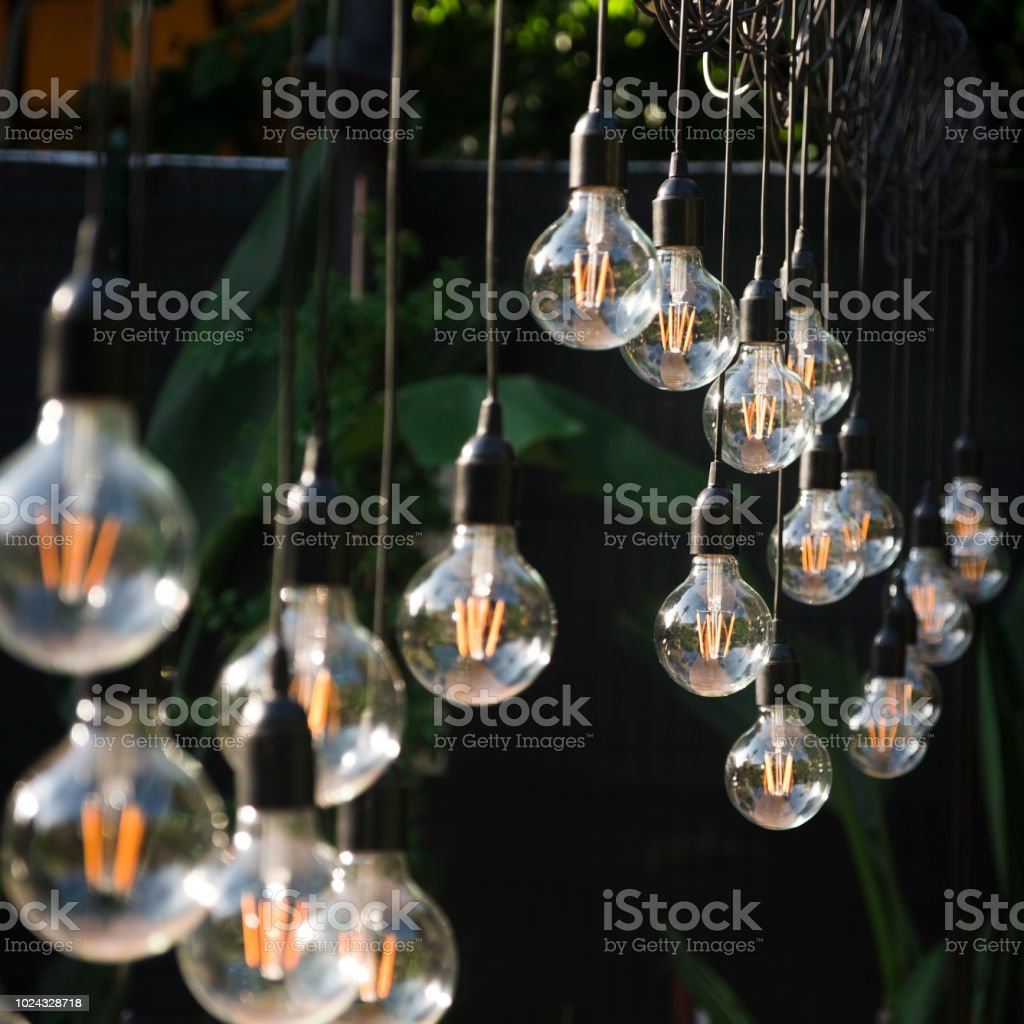 more than one light bulb hung in the garden. life style, industry,...