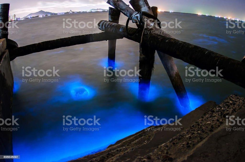 Glowing Marine Plankton at Bangsaen ,Chonburi ,Thailand stock photo