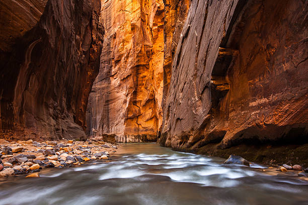 Glowing Sandstone wall, The Narrows, Zion national park, Utah stock photo