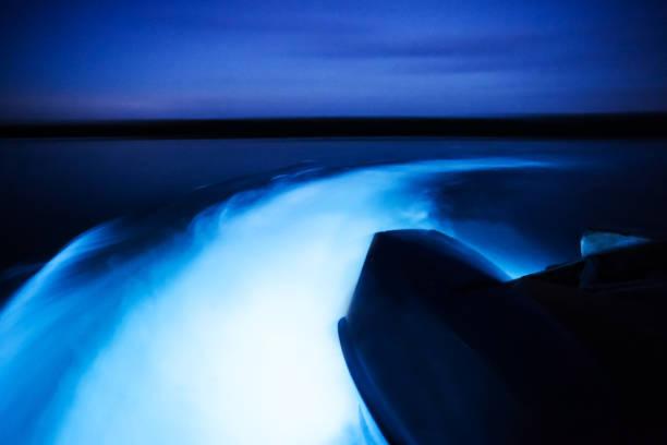 glowing waters - laguna foto e immagini stock