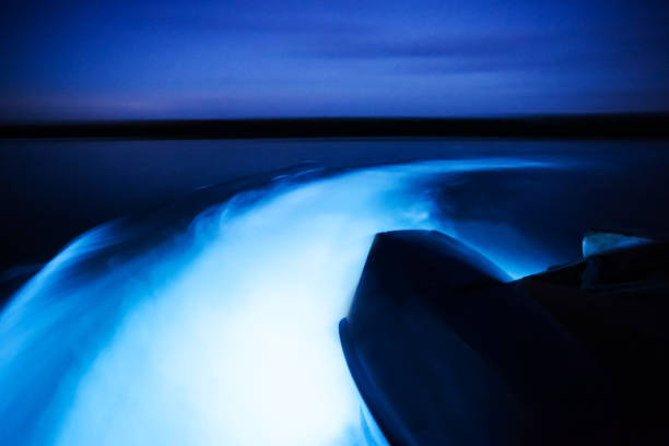 Glowing waters stock photo