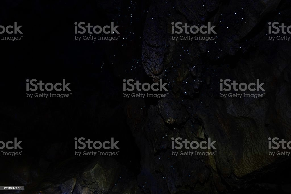 Glowworm Cave in New Zealand stock photo