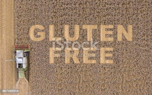 istock Gluten free diet 607493314