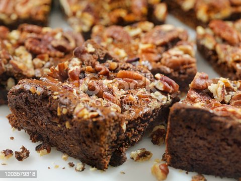 Gluten Free, Low Carbohydrate, Fudge Brownies with Sea Salted Pecans