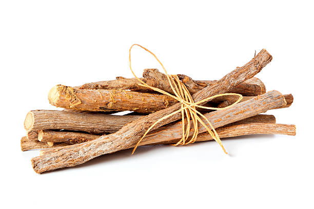 Glycyrrhiza glabra - bundled liquorice roots stock photo