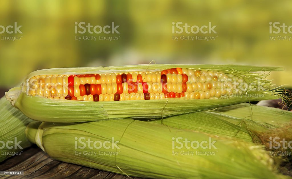 gmo food stock photo