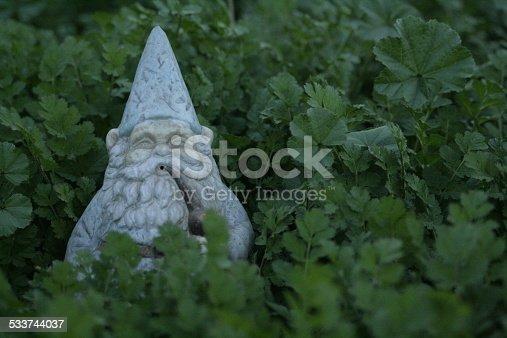 A gnome hiding in a garden.