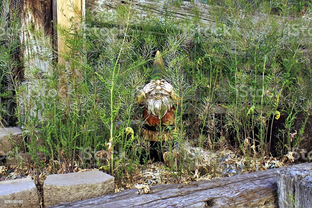 Gnome Can't Look at Overgrown Weeds stock photo