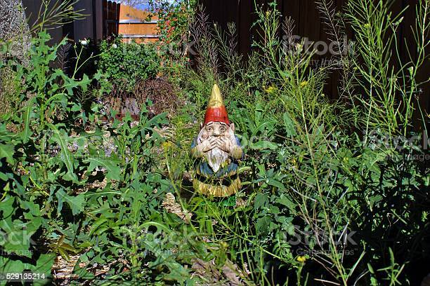 Garden gnome disgusted by overgrown side yard.