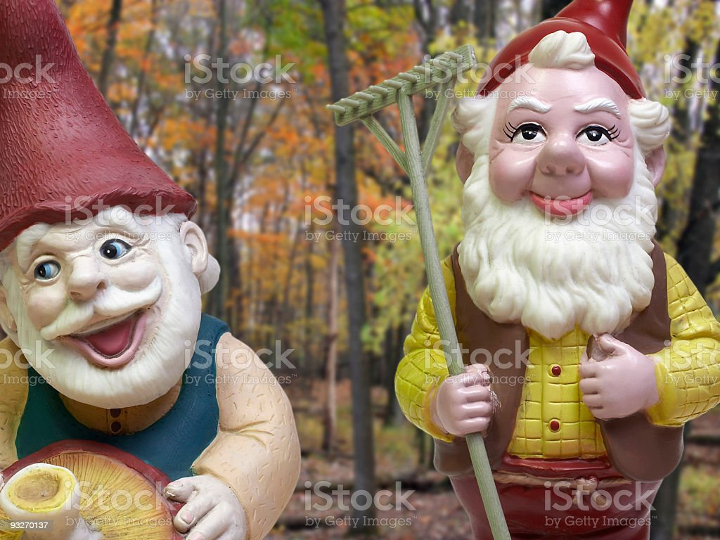 Gnomes! royalty-free stock photo