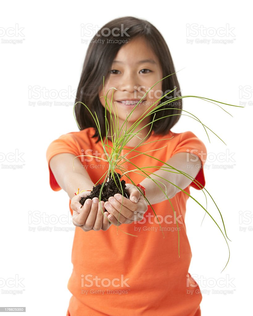 Go Green: Asian Little Girl Holding Green Plant royalty-free stock photo