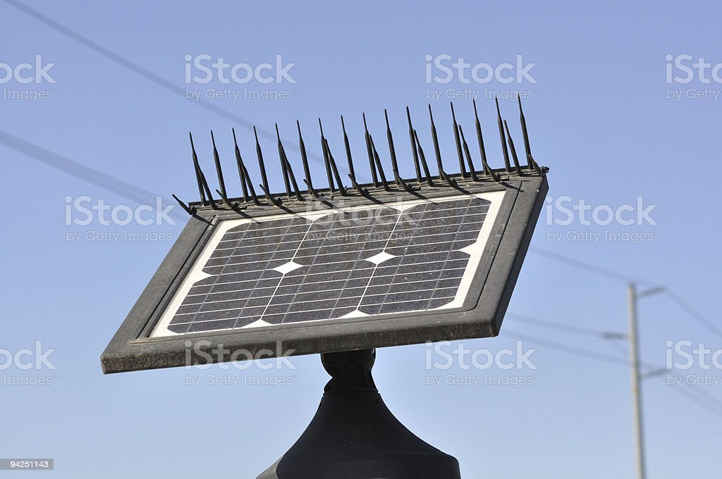 Go Green with Solar Power royalty-free stock photo