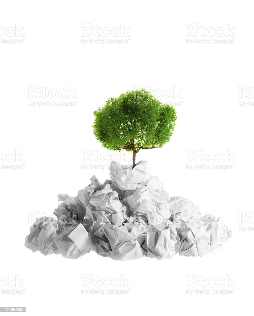 Go paperless, save a tree. royalty-free stock photo