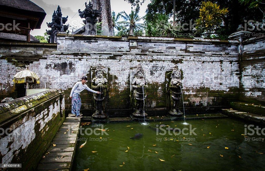 Goa Gajah pool stock photo