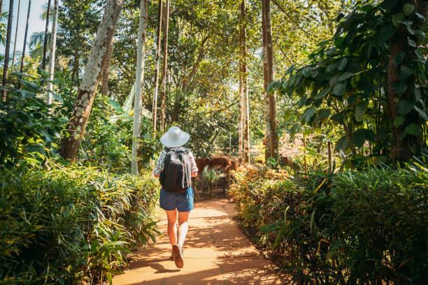 Goa, India. Young Backpacker Woman Walking Through Botanical Garden In Sunny Day stock photo
