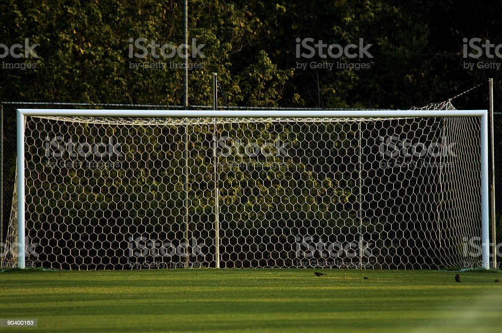Goal and Soccer Net on Soccer Field during Soccer Game royalty-free stock photo
