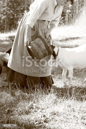 istock Goat eats from bucket held by lady wearing old-fashioned dress 183292704