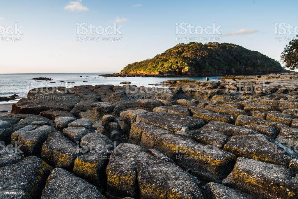Goat Island, Marine reserve, Auckland, New Zealand. stock photo
