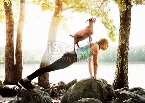 Woman doing yoga on on rocks with goat on her back.
