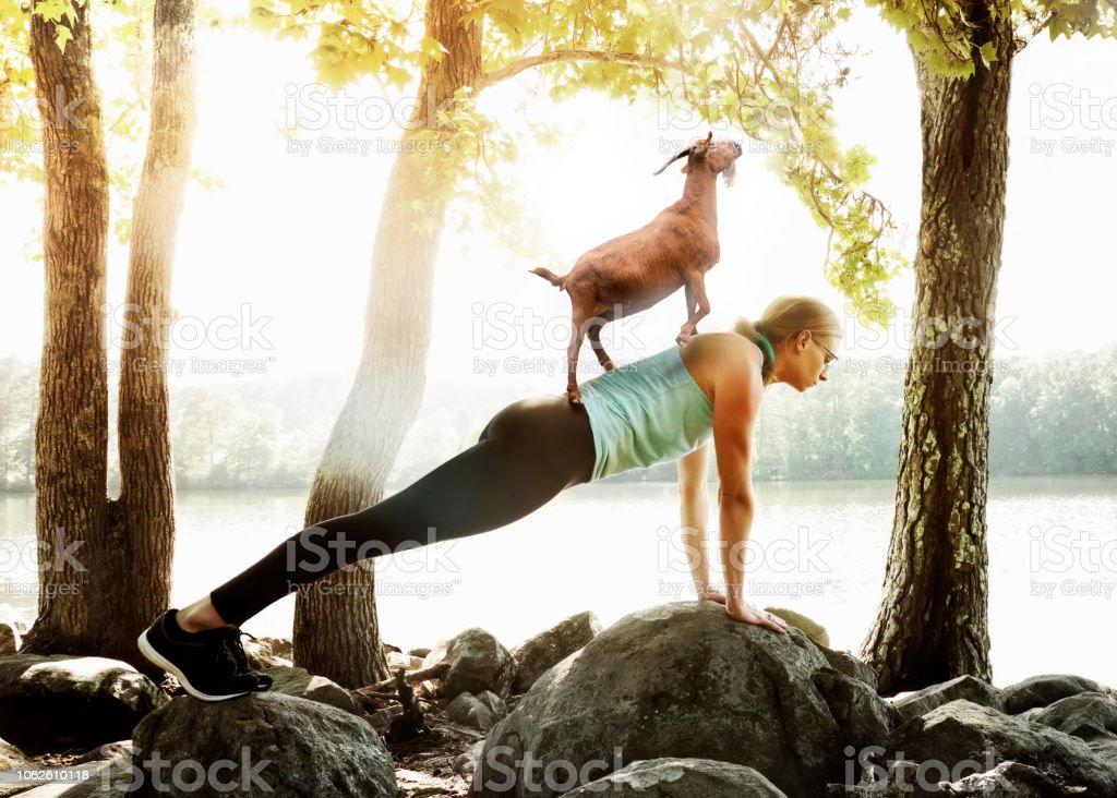 Ziege-Yoga – Foto