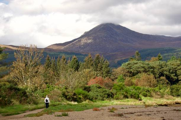 Goatfell, Isle of Arran, Scotland Autumnal scene with older lady walking along coast towards the goat fell mountain on the Island of Arran, west Scotland. skeable stock pictures, royalty-free photos & images