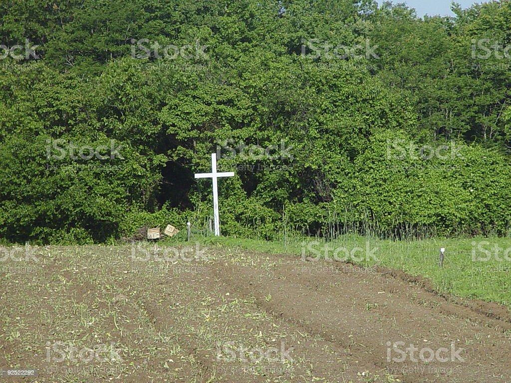 God's Field royalty-free stock photo