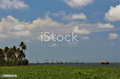 Gods own country, the land of Coconut Trees and Backwaters