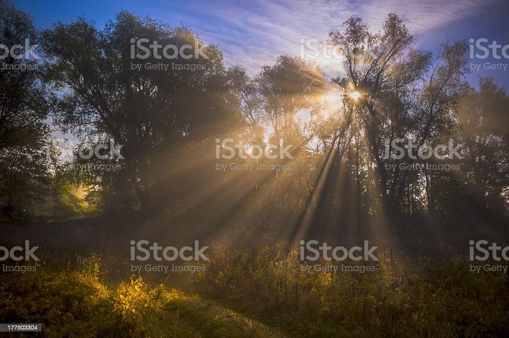 Gods Rays stock photo