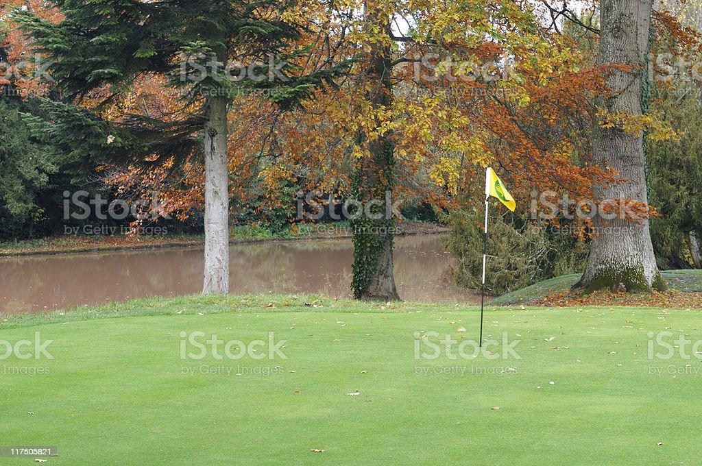 Gofl Green with Water Hazard stock photo