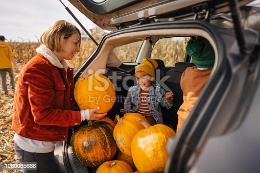 Photo of cute little boys putting pumpkins into a car trunk, accompanied by their mother; going back home after spending the day on a lovely pumpkin patch and picking pumpkins; fall activities for families with young children.