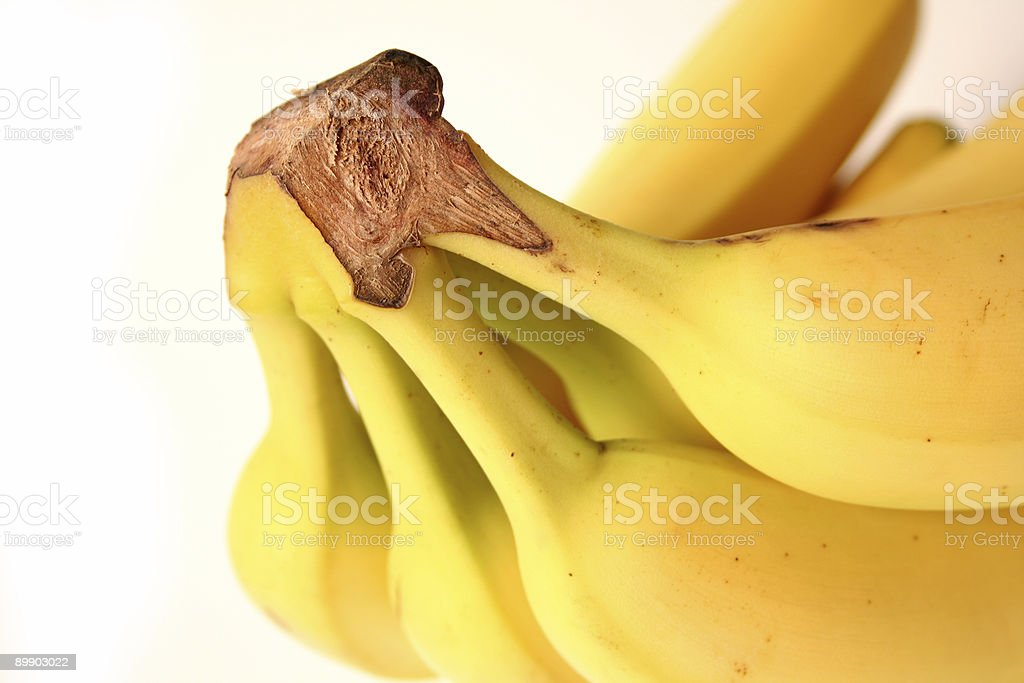 Going Bananas royalty-free stock photo