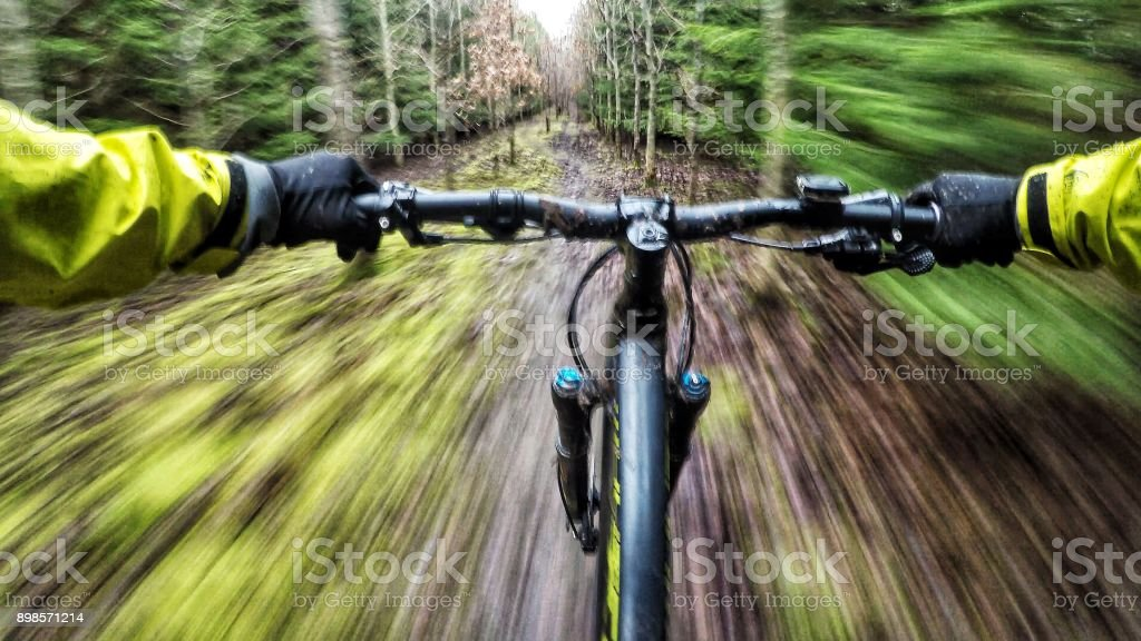 Going downhill on a mountain bike in the woods - Royalty-free Bicycle Stock Photo
