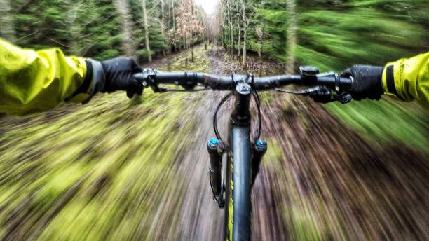 Going downhill on a mountain bike in the woods stock photo
