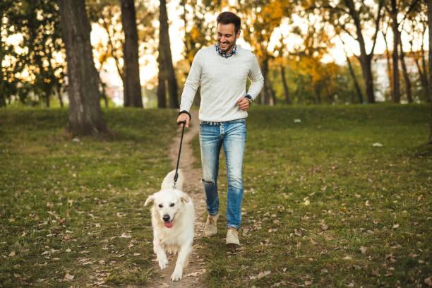 Going for a walk picture id917875026?b=1&k=6&m=917875026&s=612x612&w=0&h=qrx phefta9oerservtl6qecjlt67stcxs2tuuwfyli=