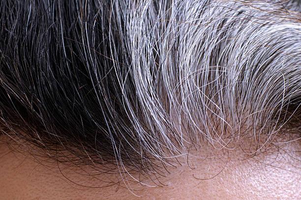 Va cheveux gris - Photo